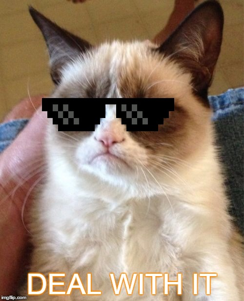 Grumpy Cat Meme | DEAL WITH IT | image tagged in memes,grumpy cat | made w/ Imgflip meme maker