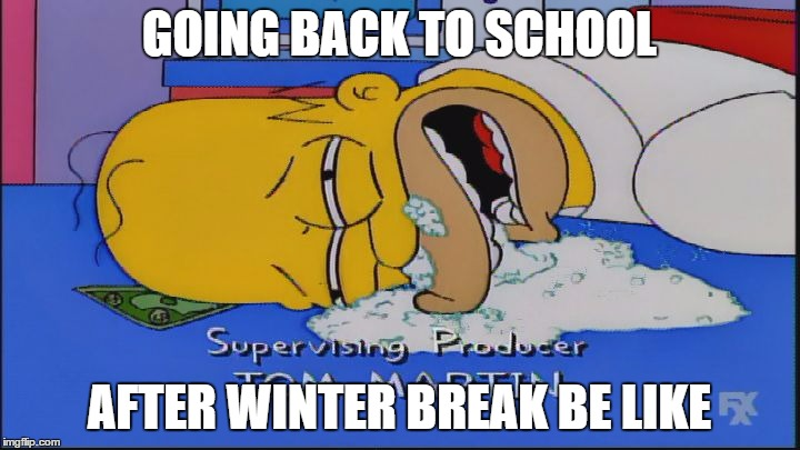 When winter break is over | GOING BACK TO SCHOOL AFTER WINTER BREAK BE LIKE | image tagged in homer simpson baking soda,memes,school,funny,simpsons,homer simpson | made w/ Imgflip meme maker