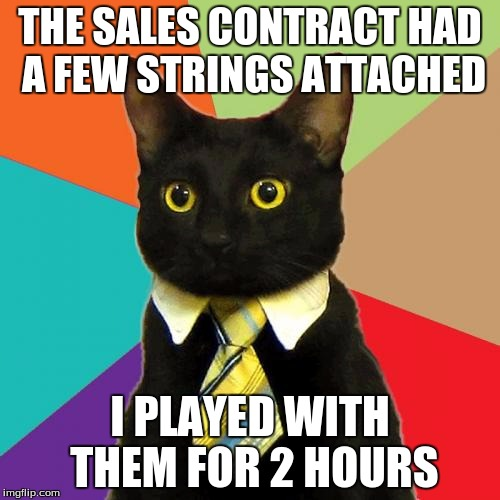 Business Cat Meme | THE SALES CONTRACT HAD A FEW STRINGS ATTACHED I PLAYED WITH THEM FOR 2 HOURS | image tagged in memes,business cat | made w/ Imgflip meme maker