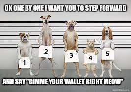 "The Line Up | OK ONE BY ONE I WANT YOU TO STEP FORWARD AND SAY ""GIMME YOUR WALLET RIGHT MEOW"" 