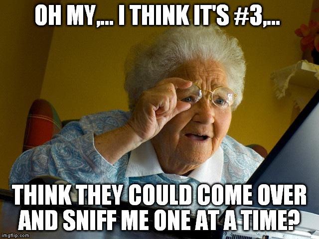 Grandma Finds The Internet Meme | OH MY,... I THINK IT'S #3,... THINK THEY COULD COME OVER AND SNIFF ME ONE AT A TIME? | image tagged in memes,grandma finds the internet | made w/ Imgflip meme maker