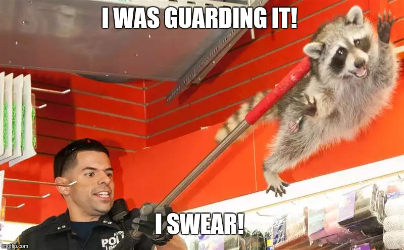 I WAS GUARDING IT! I SWEAR! | made w/ Imgflip meme maker