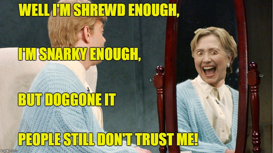 WELL I'M SHREWD ENOUGH, PEOPLE STILL DON'T TRUST ME! I'M SNARKY ENOUGH, BUT DOGGONE IT | made w/ Imgflip meme maker