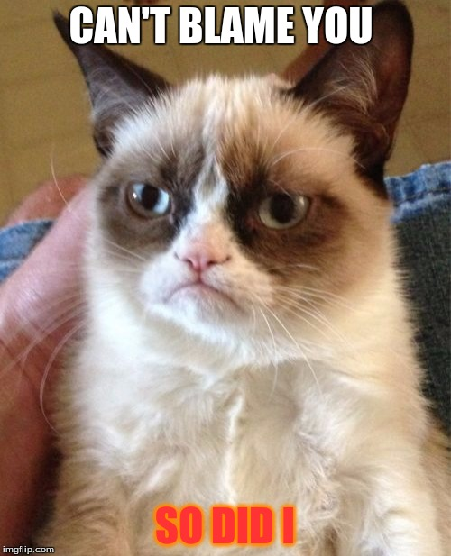 Grumpy Cat Meme | CAN'T BLAME YOU SO DID I | image tagged in memes,grumpy cat | made w/ Imgflip meme maker