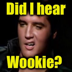 Elvis, thank you | Did I hear Wookie? | image tagged in elvis,thank you | made w/ Imgflip meme maker