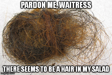 Hair Ball | PARDON ME, WAITRESS THERE SEEMS TO BE A HAIR IN MY SALAD | image tagged in hair ball | made w/ Imgflip meme maker