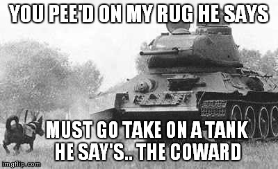 YOU PEE'D ON MY RUG HE SAYS MUST GO TAKE ON A TANK HE SAY'S.. THE COWARD | made w/ Imgflip meme maker