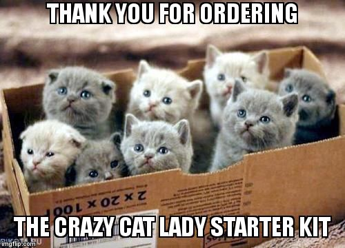 box of cats | THANK YOU FOR ORDERING  THE CRAZY CAT LADY STARTER KIT | image tagged in box of cats | made w/ Imgflip meme maker