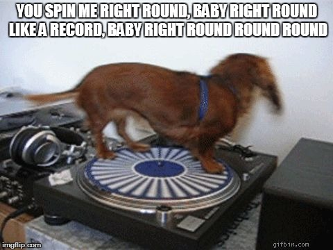 Spinning record Dog extraordinaire | YOU SPIN ME RIGHT ROUND, BABYRIGHT ROUND LIKE A RECORD, BABYRIGHT ROUND ROUND ROUND | image tagged in spinning record dog extraordinaire | made w/ Imgflip meme maker