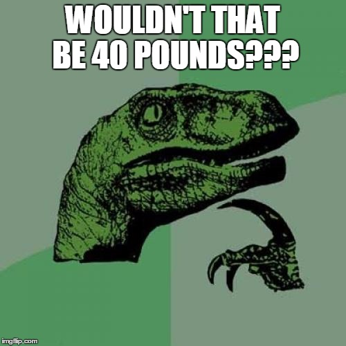 Philosoraptor Meme | WOULDN'T THAT BE 40 POUNDS??? | image tagged in memes,philosoraptor | made w/ Imgflip meme maker