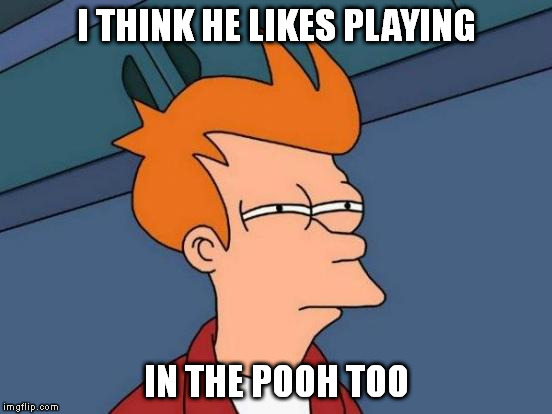 Futurama Fry Meme | I THINK HE LIKES PLAYING IN THE POOH TOO | image tagged in memes,futurama fry | made w/ Imgflip meme maker