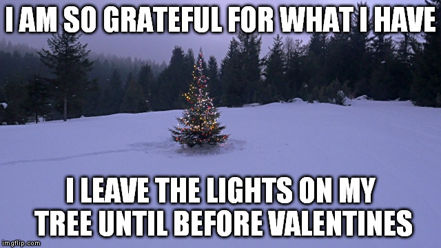 I AM SO GRATEFUL FOR WHAT I HAVE I LEAVE THE LIGHTS ON MY TREE UNTIL BEFORE VALENTINES | made w/ Imgflip meme maker