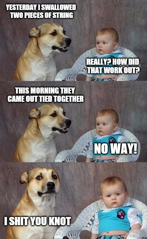 And it's out of there | YESTERDAY I SWALLOWED TWO PIECES OF STRING REALLY? HOW DID THAT WORK OUT? THIS MORNING THEY CAME OUT TIED TOGETHER NO WAY! I SHIT YOU KNOT | image tagged in dad joke dog 2 | made w/ Imgflip meme maker