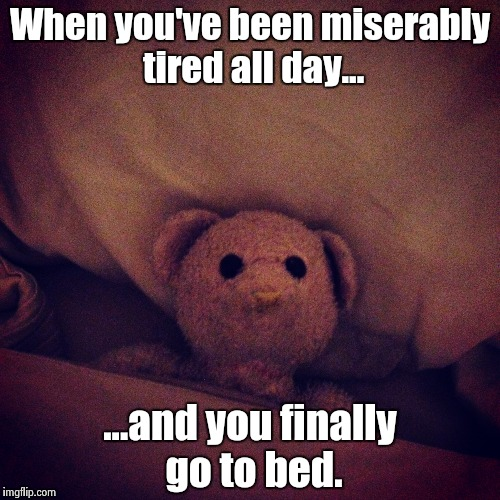 When you've been miserably tired all day... ...and you finally go to bed. | image tagged in awake,insomnia,memes,so true memes,funny,teddy bear | made w/ Imgflip meme maker