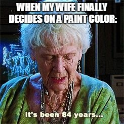 Just bought a new house | WHEN MY WIFE FINALLY DECIDES ON A PAINT COLOR: | image tagged in it's been 84 years,titanic,bad luck brian,hahaha,the most interesting man in the world | made w/ Imgflip meme maker