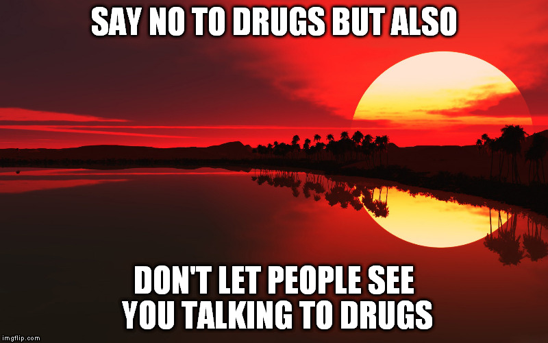 SAY NO TO DRUGS BUT ALSO DON'T LET PEOPLE SEE YOU TALKING TO DRUGS | image tagged in sunset | made w/ Imgflip meme maker