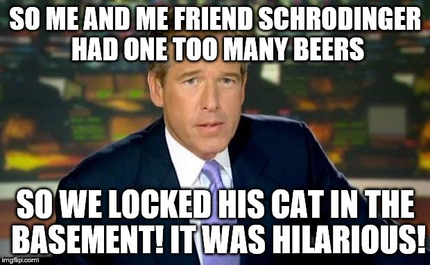 Brian Williams, founder of Quantum Theory. | SO ME AND ME FRIEND SCHRODINGER HAD ONE TOO MANY BEERS SO WE LOCKED HIS CAT IN THE BASEMENT! IT WAS HILARIOUS! | image tagged in memes,brian williams was there | made w/ Imgflip meme maker