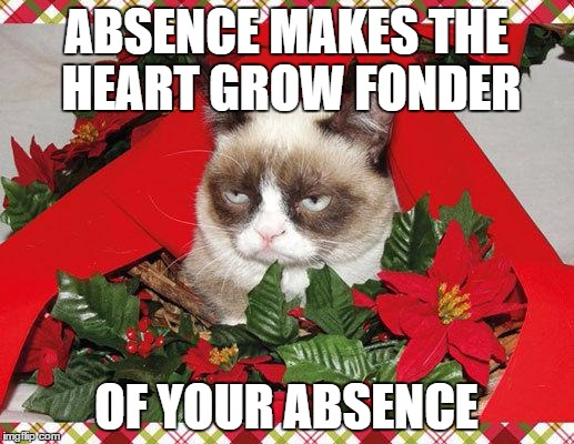 Grumpy Cat Mistletoe | ABSENCE MAKES THE HEART GROW FONDER OF YOUR ABSENCE | image tagged in memes,grumpy cat mistletoe,grumpy cat | made w/ Imgflip meme maker