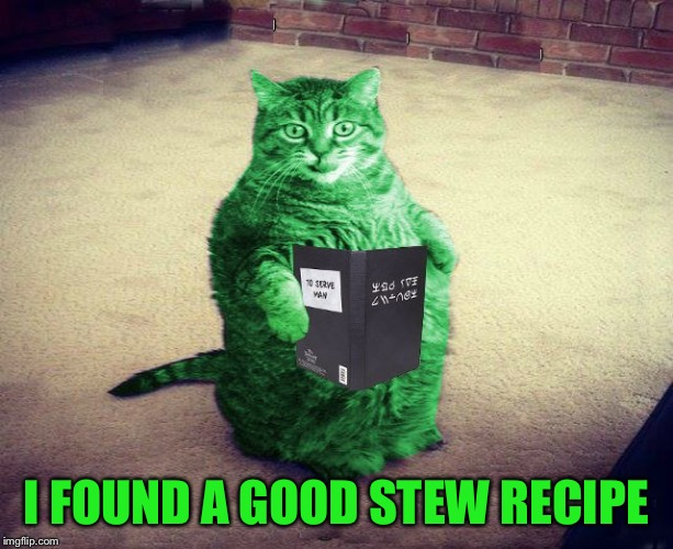 Best RayCat Meme Eva | I FOUND A GOOD STEW RECIPE | image tagged in best raycat meme eva | made w/ Imgflip meme maker