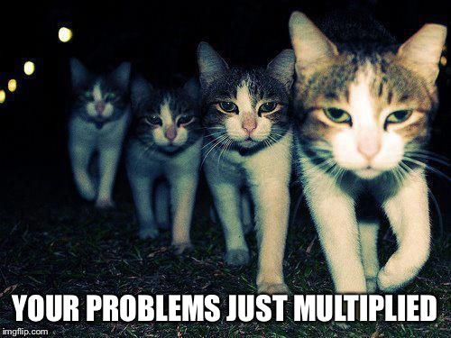 wrong neighborhood cats | YOUR PROBLEMS JUST MULTIPLIED | image tagged in wrong neighborhood cats | made w/ Imgflip meme maker
