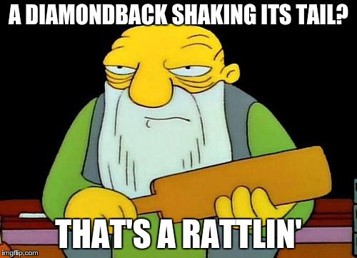 bad pun beardly | A DIAMONDBACK SHAKING ITS TAIL? THAT'S A RATTLIN' | image tagged in memes,that's a paddlin',bad pun,puns,cringe | made w/ Imgflip meme maker