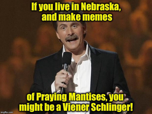 ..........you might be a Viener Schlinger. | If you live in Nebraska, and make memes of Praying Mantises, you might be a Viener Schlinger! | image tagged in foxworthy,memes,funny memes | made w/ Imgflip meme maker