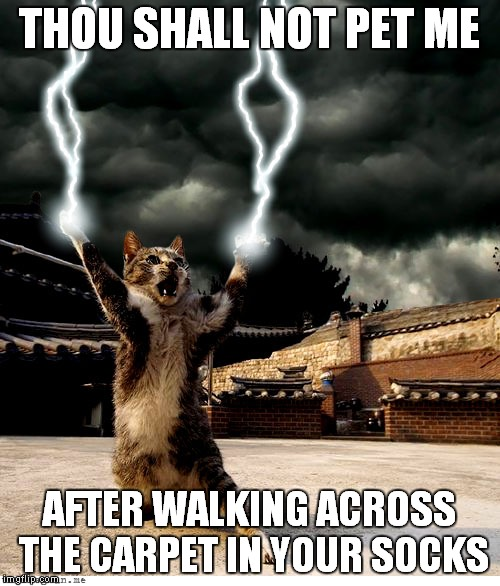 Static Kitty | THOU SHALL NOT PET ME AFTER WALKING ACROSS THE CARPET IN YOUR SOCKS | image tagged in chemistry cat,cat,lightning | made w/ Imgflip meme maker