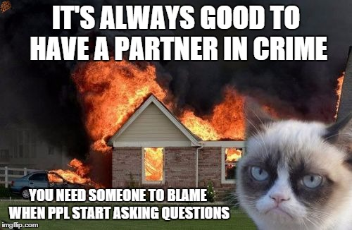 Burn Kitty Meme | IT'S ALWAYS GOOD TO HAVE A PARTNER IN CRIME YOU NEED SOMEONE TO BLAME WHEN PPL START ASKING QUESTIONS | image tagged in memes,burn kitty,scumbag | made w/ Imgflip meme maker
