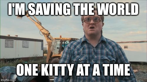 Trailer Park Boys Bubbles | I'M SAVING THE WORLD ONE KITTY AT A TIME | image tagged in memes,trailer park boys bubbles | made w/ Imgflip meme maker