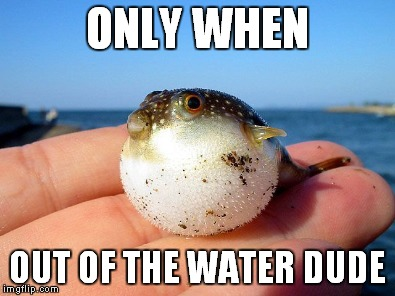 ONLY WHEN OUT OF THE WATER DUDE | made w/ Imgflip meme maker