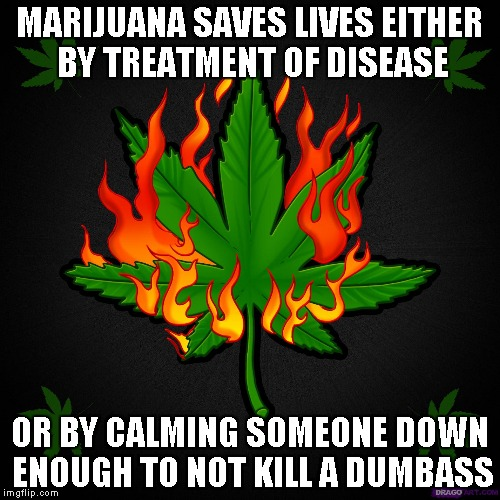 MARIJUANA SAVES LIVES EITHER BY TREATMENT OF DISEASE OR BY CALMING SOMEONE DOWN ENOUGH TO NOT KILL A DUMBASS | made w/ Imgflip meme maker