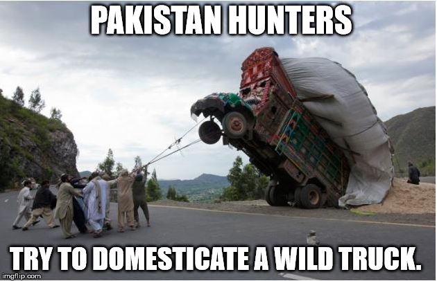 Hunters try to domesticate wild truck | PAKISTAN HUNTERS TRY TO DOMESTICATE A WILD TRUCK. | image tagged in hunting wild trucks | made w/ Imgflip meme maker