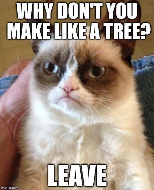 Grumpy Cat Meme - Imgflip