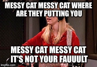 MESSY CAT MESSY CAT WHERE ARE THEY PUTTING YOU MESSY CAT MESSY CAT IT'S NOT YOUR FAUUULT | made w/ Imgflip meme maker