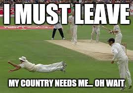 cricket Imgflip