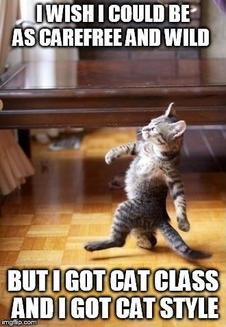 Struttin' | I WISH I COULD BE AS CAREFREE AND WILD BUT I GOT CAT CLASS AND I GOT CAT STYLE | image tagged in memes,cool cat stroll,funny,cat | made w/ Imgflip meme maker