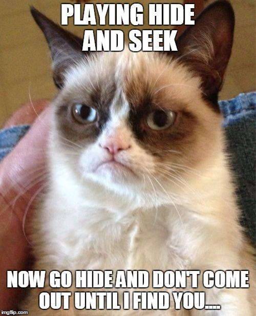Grumpy Cat Meme | PLAYING HIDE AND SEEK NOW GO HIDE AND DON'T COME OUT UNTIL I FIND YOU.... | image tagged in memes,grumpy cat | made w/ Imgflip meme maker