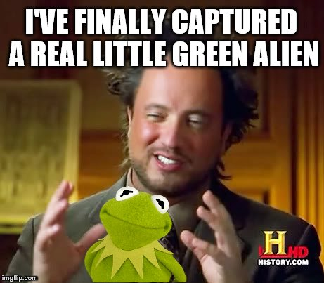 Alien Guy captures little green alien   | I'VE FINALLY CAPTURED A REAL LITTLE GREEN ALIEN | image tagged in alien guy,green alien,memes,kermit,capture,proof | made w/ Imgflip meme maker