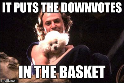 IT PUTS THE DOWNVOTES IN THE BASKET | made w/ Imgflip meme maker