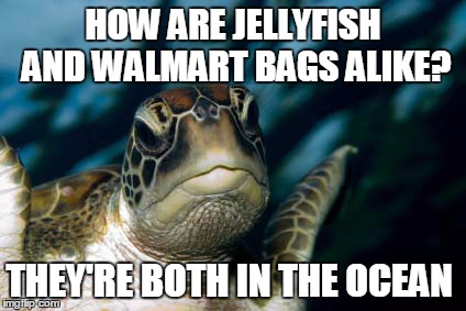 Pollution Solution | HOW ARE JELLYFISH AND WALMART BAGS ALIKE? THEY'RE BOTH IN THE OCEAN | image tagged in turtle meme | made w/ Imgflip meme maker