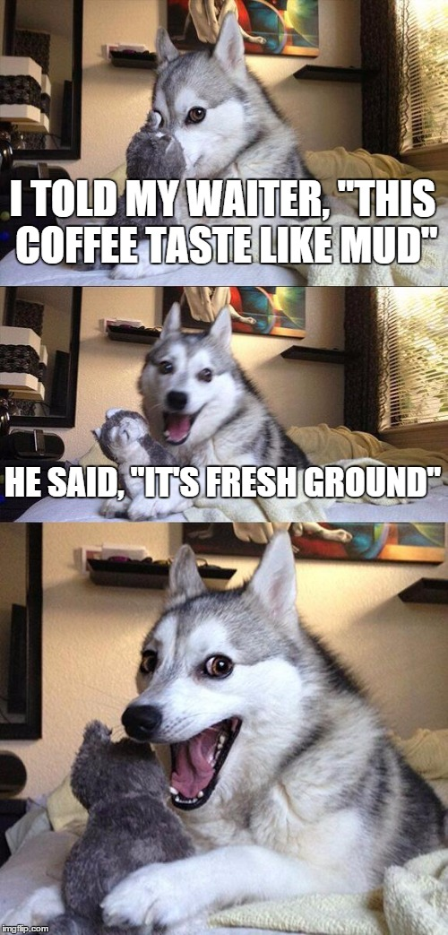 "Bad Pun Dog Meme | I TOLD MY WAITER, ""THIS COFFEE TASTE LIKE MUD"" HE SAID, ""IT'S FRESH GROUND"" 
