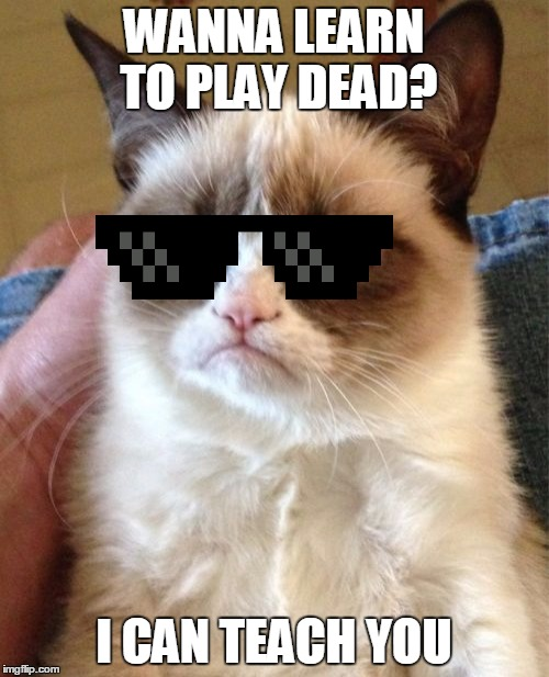 Grumpy Cat Meme | WANNA LEARN TO PLAY DEAD? I CAN TEACH YOU | image tagged in memes,grumpy cat | made w/ Imgflip meme maker