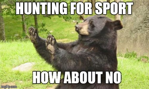 How About No Bear Meme | HUNTING FOR SPORT | image tagged in memes,how about no bear | made w/ Imgflip meme maker