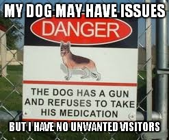 Home security | MY DOG MAY HAVE ISSUES BUT I HAVE NO UNWANTED VISITORS | image tagged in dog,medicine,security | made w/ Imgflip meme maker