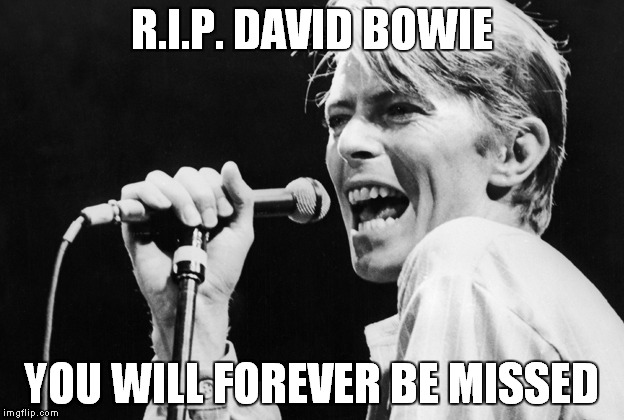 He just died on the 10th :( | R.I.P. DAVID BOWIE YOU WILL FOREVER BE MISSED | image tagged in memes,david bowie,rip | made w/ Imgflip meme maker