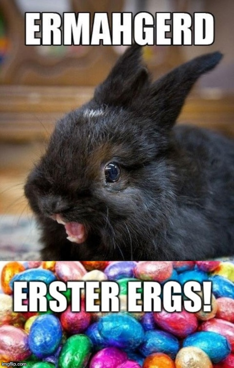 image tagged in funny,easter,rabbits,bunnies,ermahgerd | made w/ Imgflip meme maker