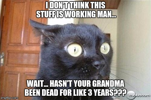 Cats | I DON'T THINK THIS STUFF IS WORKING MAN... WAIT... HASN'T YOUR GRANDMA BEEN DEAD FOR LIKE 3 YEARS??? | image tagged in cats | made w/ Imgflip meme maker