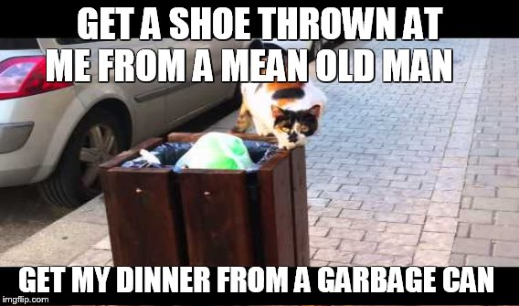 GET A SHOE THROWN AT ME FROM A MEAN OLD MAN GET MY DINNER FROM A GARBAGE CAN | made w/ Imgflip meme maker