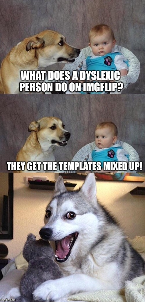 WHAT DOES A DYSLEXIC PERSON DO ON IMGFLIP? THEY GET THE TEMPLATES MIXED UP! | image tagged in dad joke dog,bad pun dog,dyslexia,imgflip,template,wrong template | made w/ Imgflip meme maker