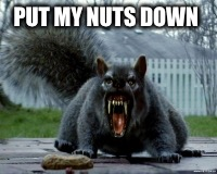 PUT MY NUTS DOWN | made w/ Imgflip meme maker